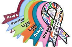 ribbon-awareness-car-magnets-23657160-235-156_orig